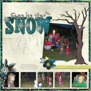 2013-04-09-Shady-Hollow-HOA-Holiday-Party-Snow