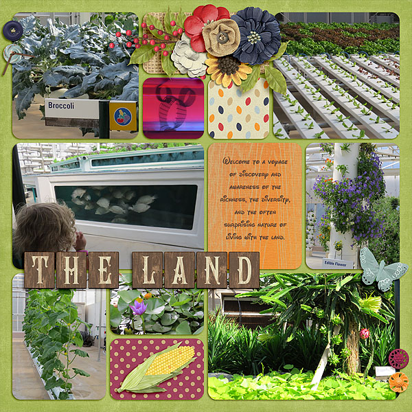 2016-09-29_lo_2014-07-26-living-with-the-land-2
