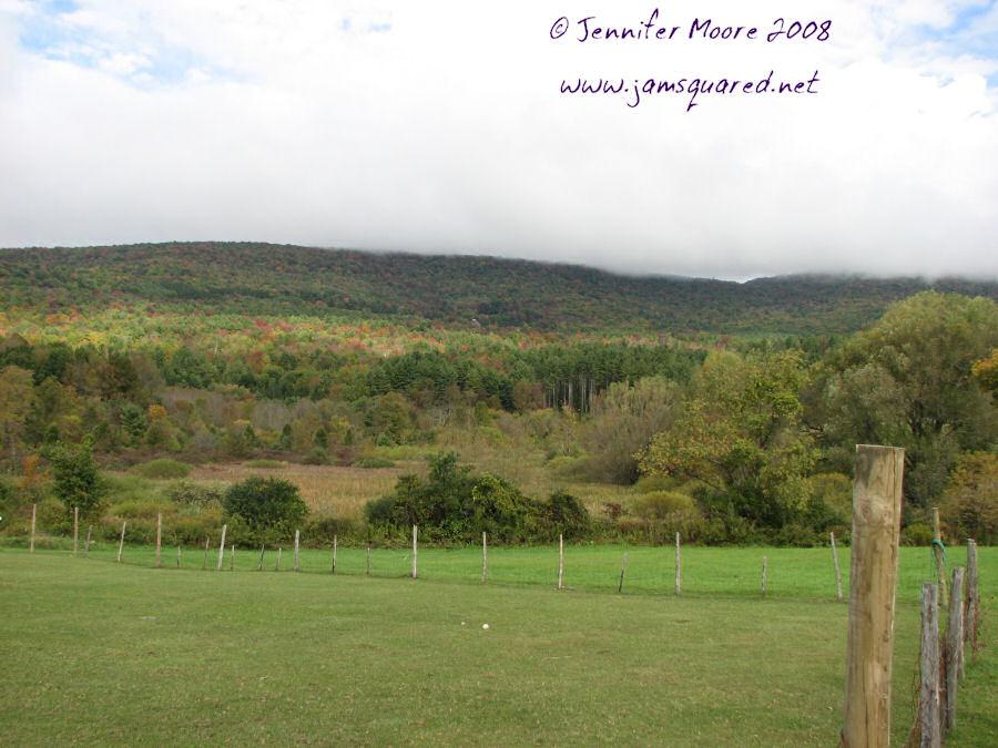 Inn's Pasture